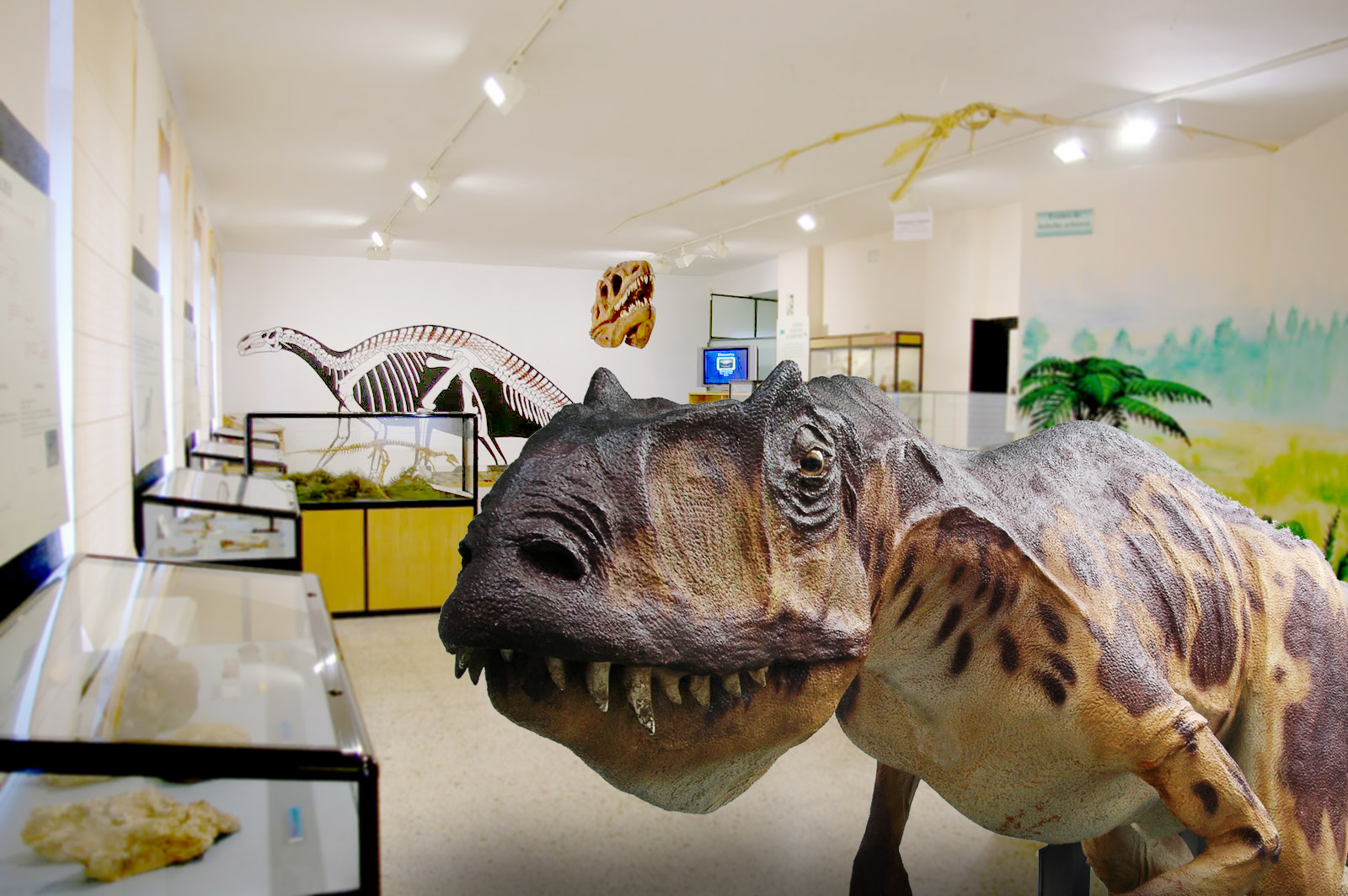 Museum of Archaeology and Paleontology